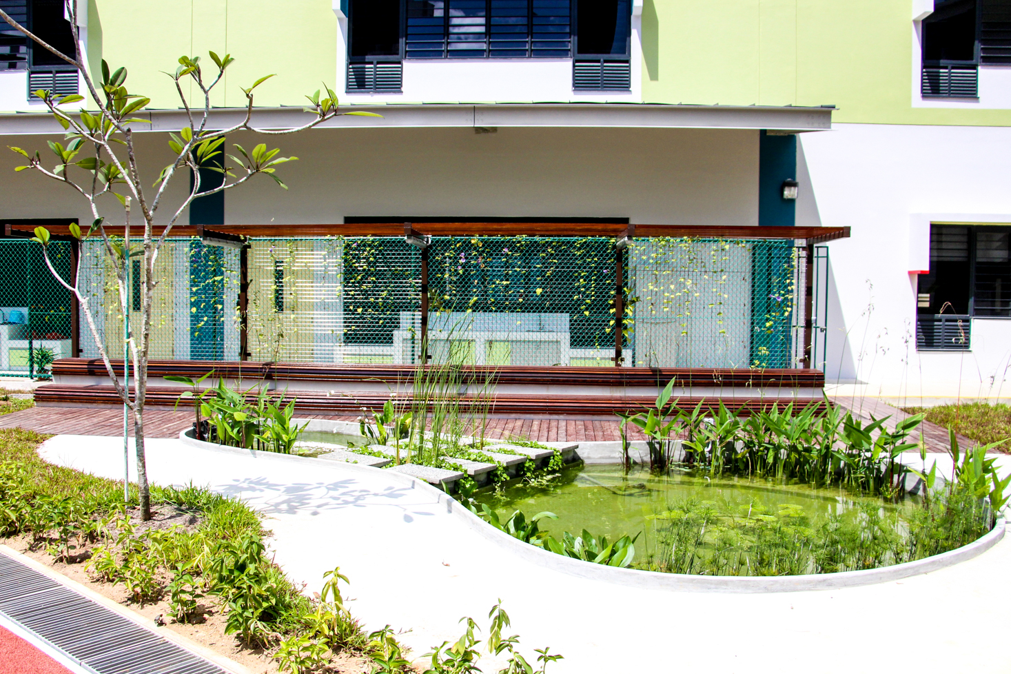Image of Science garden